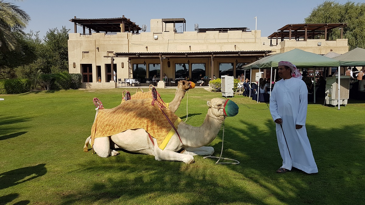 Friday Farmers Brunch - Activties - Bab Al Shams (03)